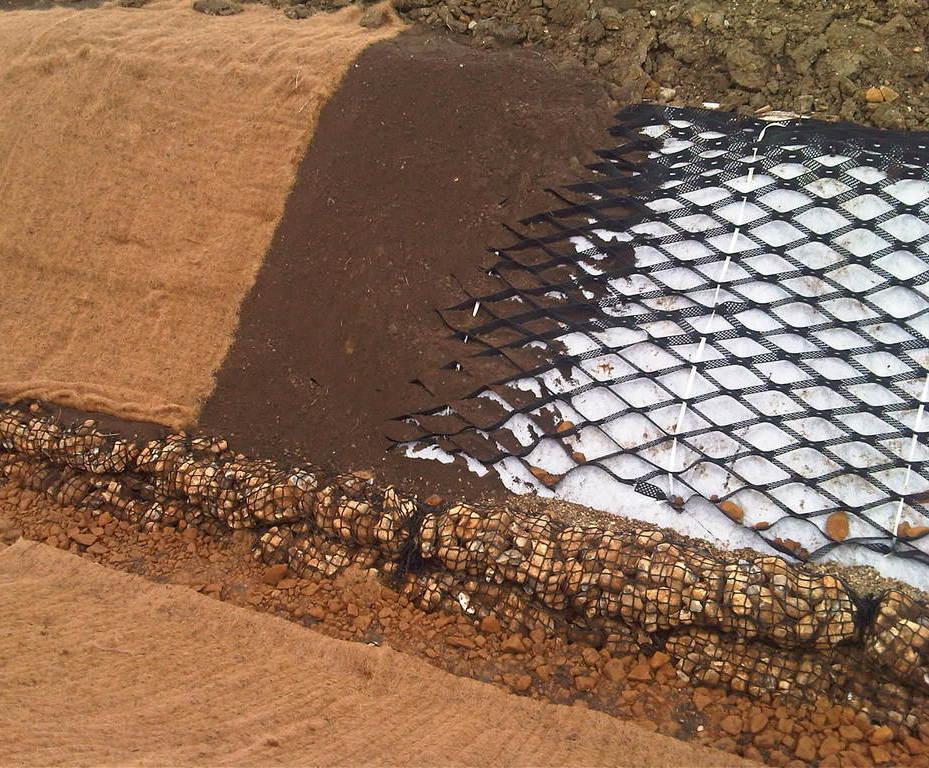 Gambar Drainage Cell Sampang